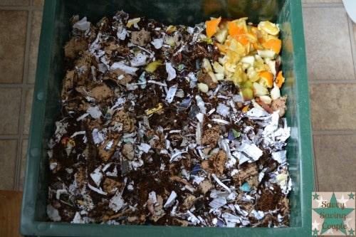 Vermi-Composting-Bin