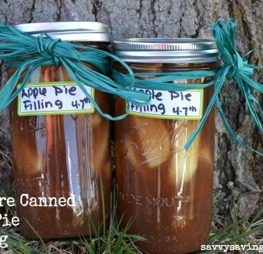 Pressure canned apple pie filling in glass jars with green bows. Jared are set near a tree.