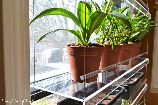 Beautiful Views Window Shelves What To Expect Savvy Saving Couple