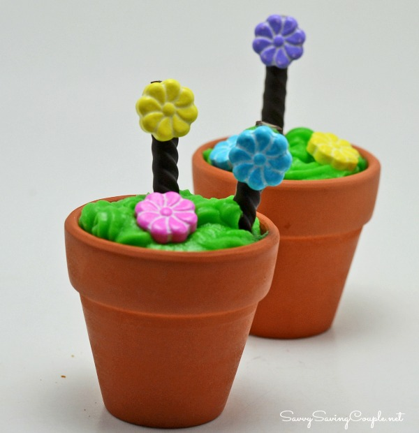 Edible-Spring-Flower-Pots