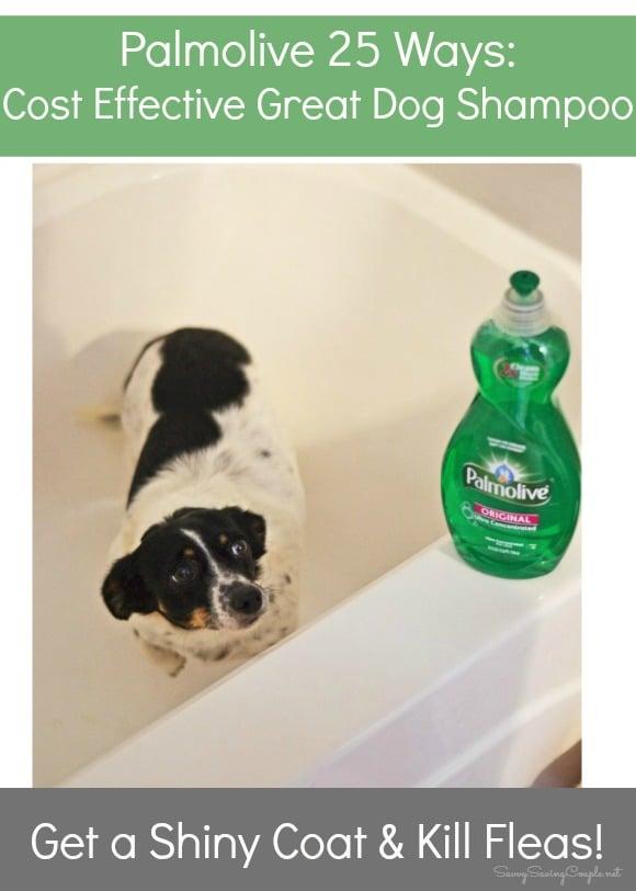palmolive-dog-shampoo