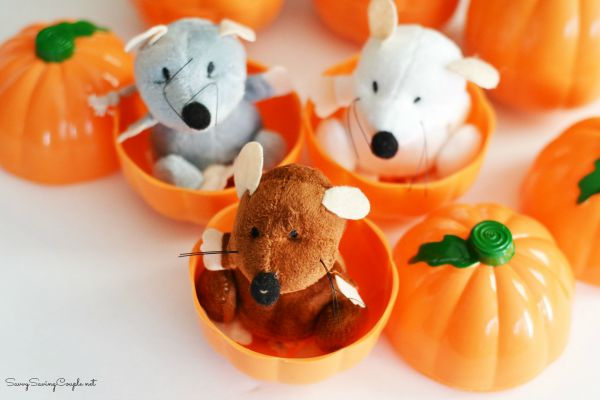 Mice-in-pumpkins
