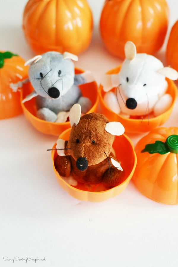 pumpkin-mice