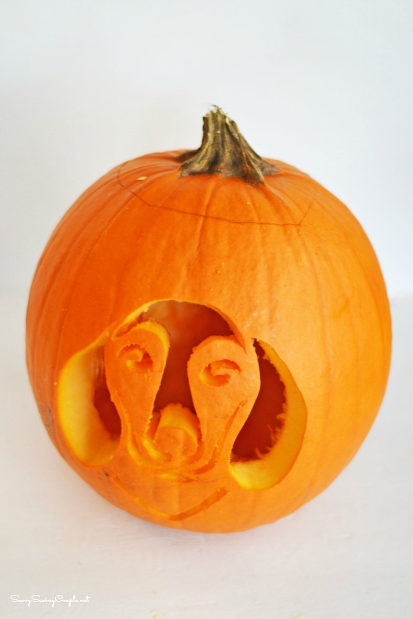 Daschaund-pumpkin