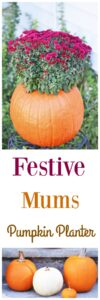 How to Make a Festive Pumpkin Mums Planter