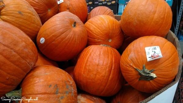 Pumpkins-at-Bjs