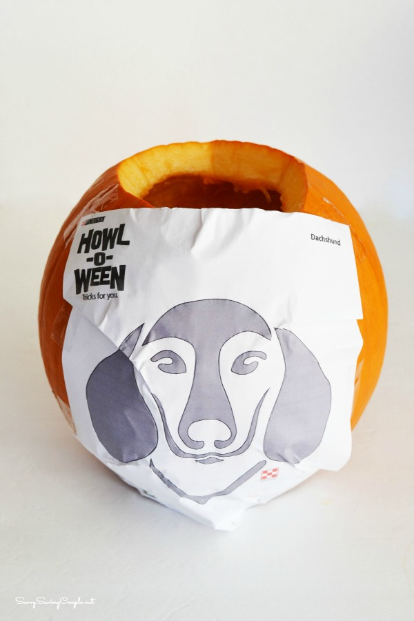 Purina-dog-pumpkin-templates