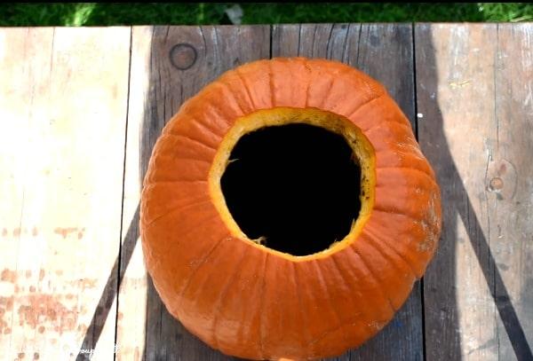 soil-in-pumpkin