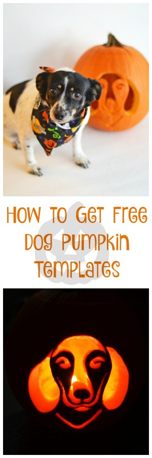 How to Get Free Dog Pumpkin Carving Templates