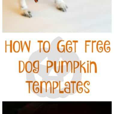 free-dog-pumpkin-templates