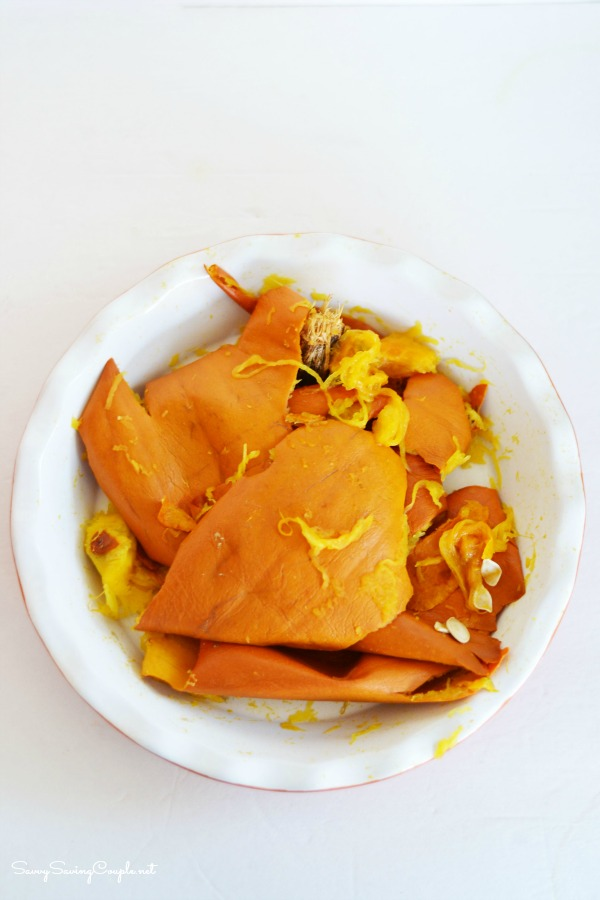 roasted-pumpkin-skin