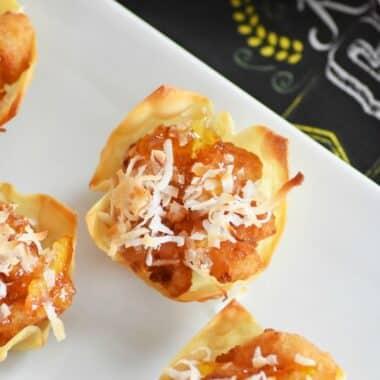 Coconut-Shrimp-wontons