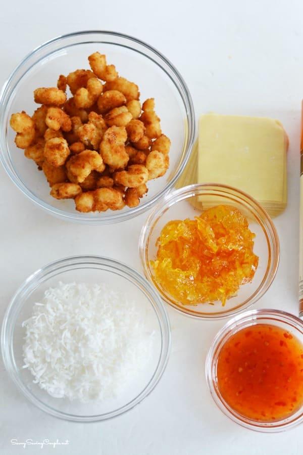 Coconut-shrimp-wonton-ingredients