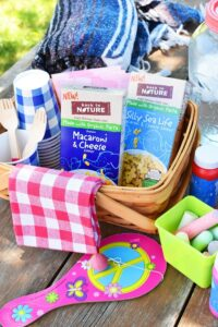 Outdoor-kids-picnic-supplies