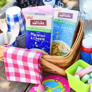 Outdoor-kids-picnic-supplies