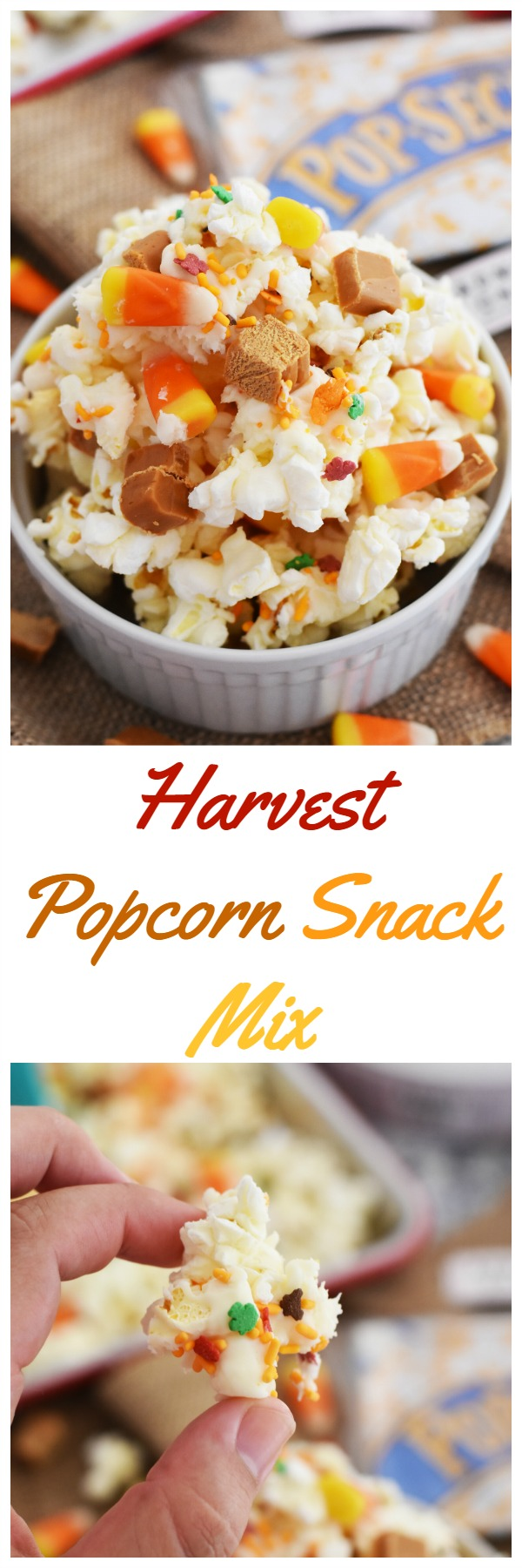 Harvest Popcorn Snack Mix- A sweet and savory concoction that is sure to satisfy your sweet tooth. This is a perfect fall party mix to enjoy with a movie.