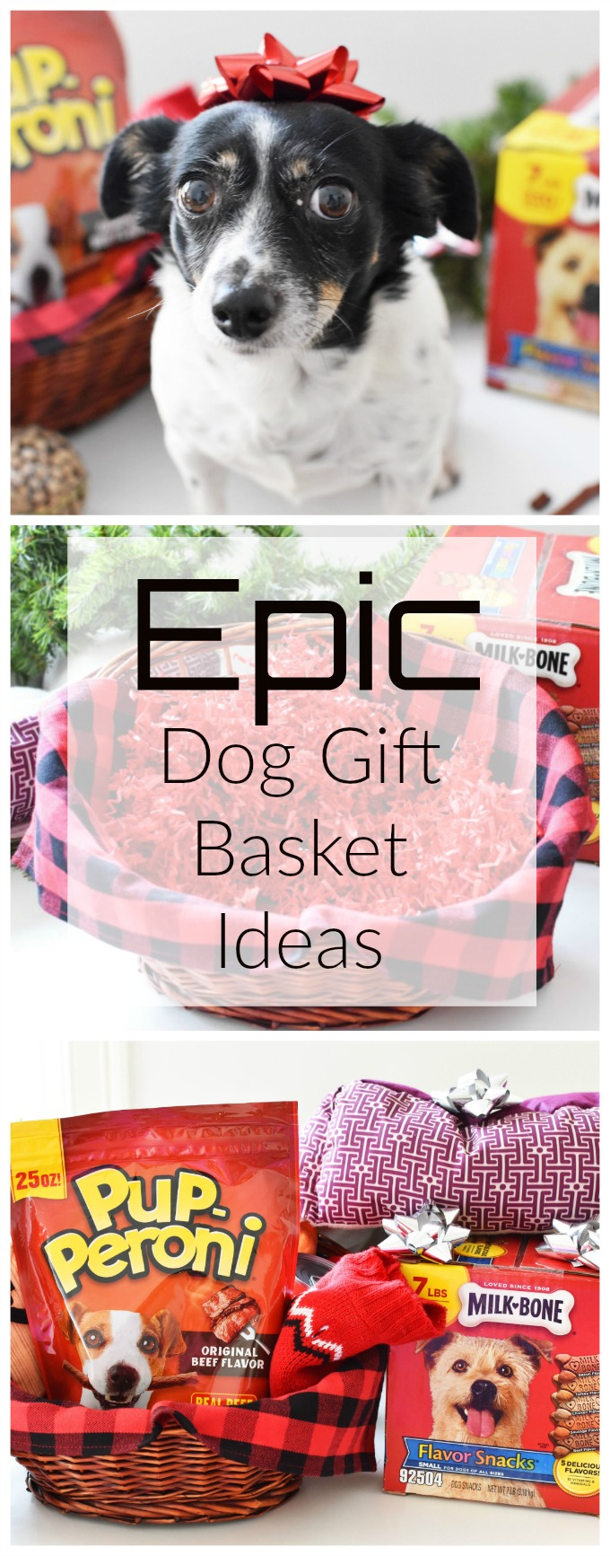 gift basket filler ideas for dogs