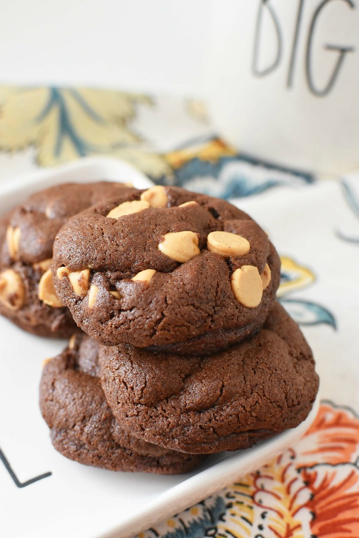 Cocoa Peanut Butter Cookies on a Ray Dunn Hope Plate