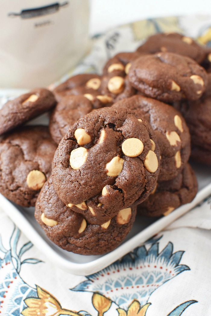 Cocoa Peanut Butter Chip Cookies1