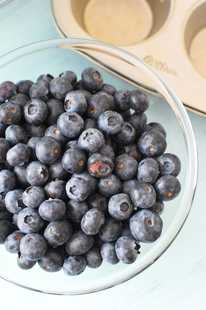 Fresh Blueberries in a bowl 1