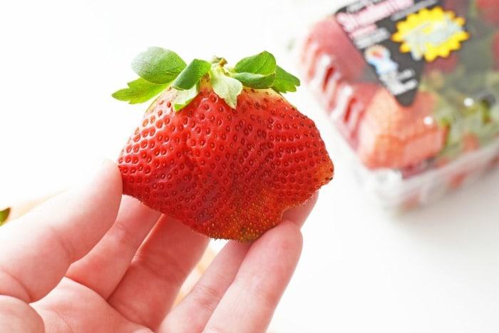 Jumbo Strawberry