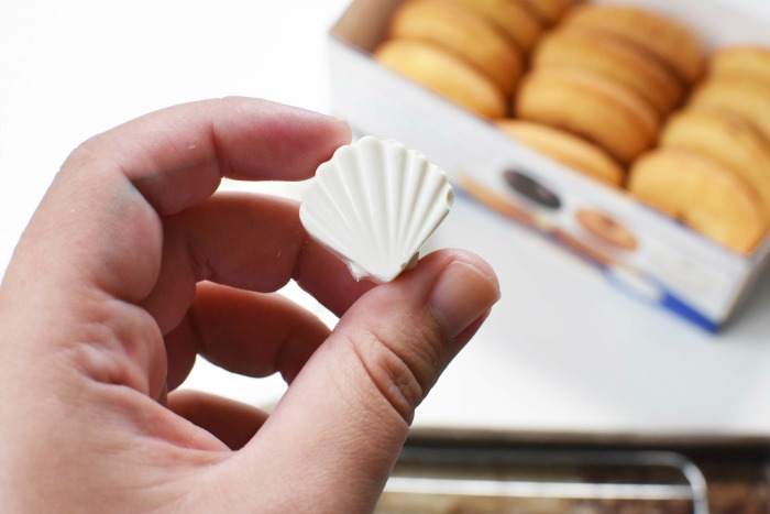 White chocolate seashell 1