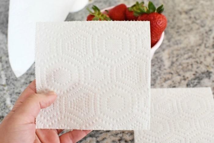 Quarter Size paper towel 1