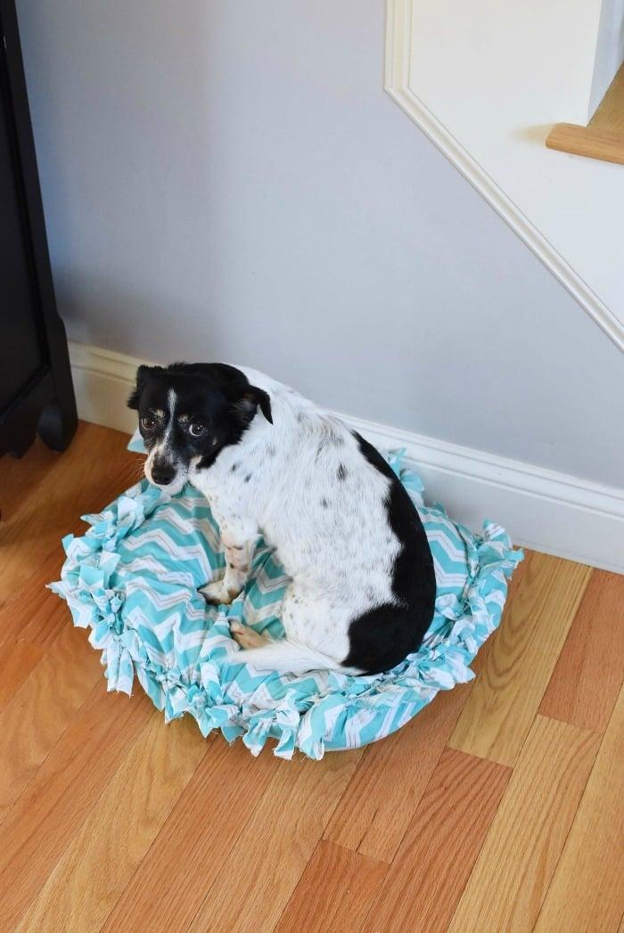 DIY No Sew Dog Pillow Bed 1