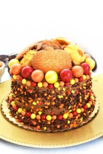 Thanksgiving Cookie Topped Cake